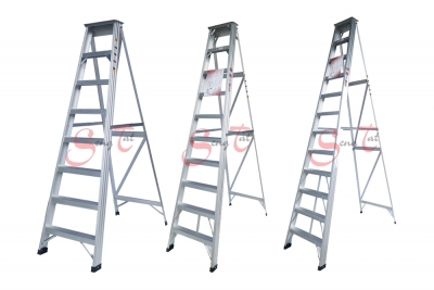 A Type Ladder Series